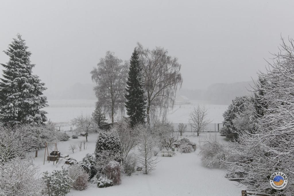 Der Garten im Schnee